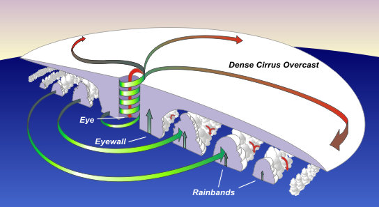 Tropical cyclone structure_NOAA website